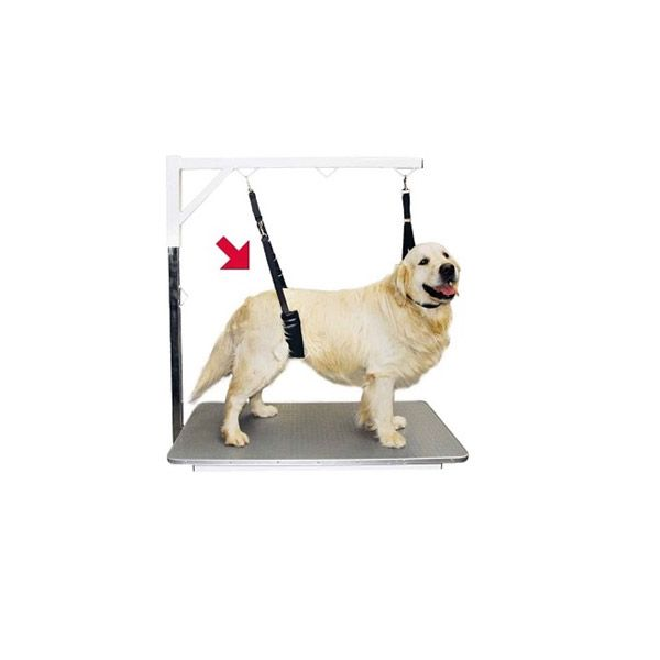 Show tech comfort belly strap för små hundar